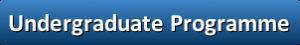button_undergraduate-programme